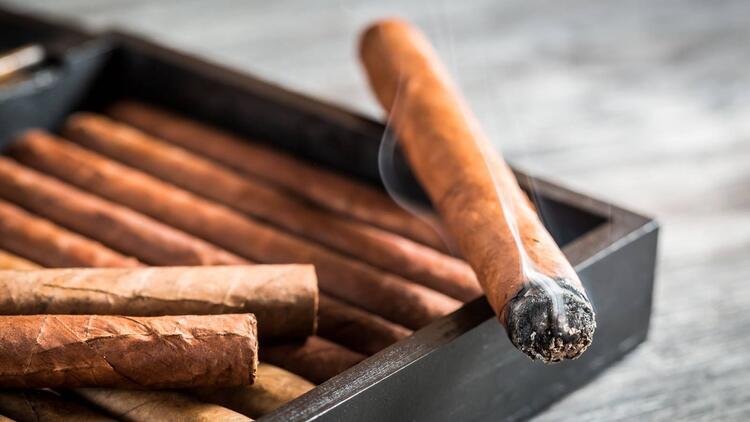 cách bảo quản xì gà